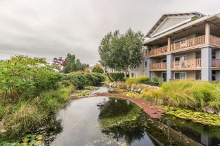 """Photo 19: 305 5600 ANDREWS Road in Richmond: Steveston South Condo for sale in """"THE LAGOONS"""" : MLS®# R2209894"""