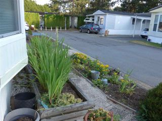 """Photo 24: 29 2120 KING GEORGE Boulevard in Surrey: King George Corridor Manufactured Home for sale in """"Five Oaks Park"""" (South Surrey White Rock)  : MLS®# R2485760"""