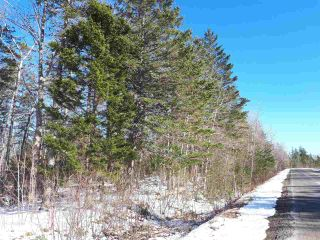 Photo 5: LOT Stronach Mountain Road in Forest Glade: 400-Annapolis County Vacant Land for sale (Annapolis Valley)  : MLS®# 201924165