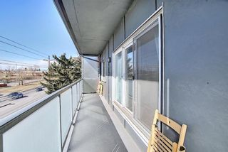 Photo 14: 411 333 Garry Crescent NE in Calgary: Greenview Apartment for sale : MLS®# A1088693