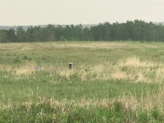 Photo 3: TWP 580 Rg Rd 240 Sturgeon County: Rural Sturgeon County Rural Land/Vacant Lot for sale : MLS®# E4248027
