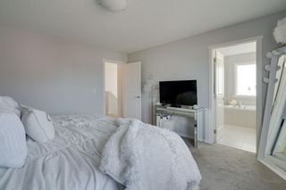 Photo 31: 183 Walden Terrace SE in Calgary: Walden Detached for sale : MLS®# A1123149