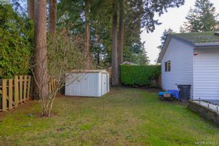 Photo 29: 436 Tipton Ave in VICTORIA: Co Wishart South House for sale (Colwood)  : MLS®# 803370