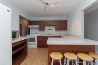 Photo 7: 303 1360 Esquimalt Rd in : Es Esquimalt Condo for sale (Esquimalt)  : MLS®# 887643