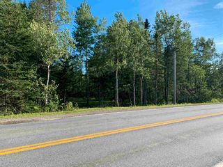 Photo 8: Lot 31 Highway 14 in Nine Mile River: 105-East Hants/Colchester West Vacant Land for sale (Halifax-Dartmouth)  : MLS®# 202118383