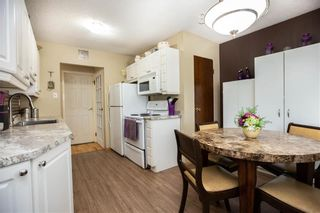 Photo 6: 53 Woodydell Avenue in Winnipeg: Residential for sale (2E)  : MLS®# 202026831