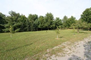 Photo 4: 1564 Prospect Road in Kawartha Lakes: Rural Eldon Property for sale : MLS®# X5363567