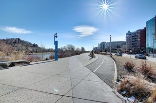 Photo 36: 203 110 2 Avenue SE in Calgary: Chinatown Apartment for sale : MLS®# A1089939