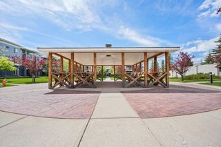 Photo 23: 4205 2280 68 Street NE in Calgary: Monterey Park Apartment for sale : MLS®# A1143228