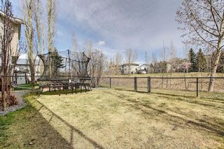 Photo 34: 213 westcreek Springs: Chestermere Detached for sale : MLS®# A1102308