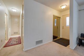 Photo 19: 14211 87 Avenue in Edmonton: Zone 10 House for sale : MLS®# E4223895