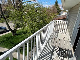 Photo 20: 1144 Lake Huron Crescent SE in Calgary: Bonavista Downs Detached for sale : MLS®# A1098610