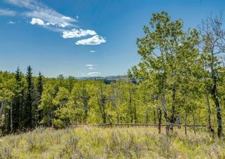 Photo 17: 245 COTTAGECLUB Crescent in Rural Rocky View County: Rural Rocky View MD Residential Land for sale : MLS®# A1116349