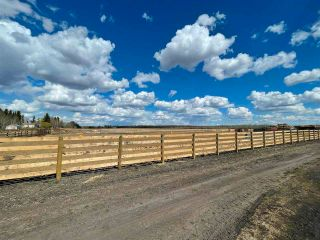 Photo 21: Twp 604 Rg Rd 244: Rural Westlock County Rural Land/Vacant Lot for sale : MLS®# E4223747