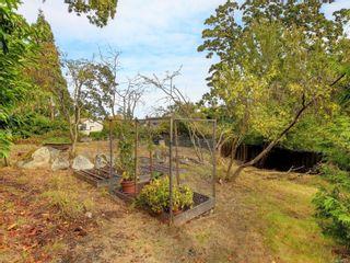 Photo 29: 4 1759 Rockland Ave in : Vi Rockland Condo for sale (Victoria)  : MLS®# 886909