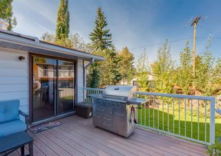 Photo 34: 163 Whiteview Close NE in Calgary: Whitehorn Detached for sale : MLS®# A1146793