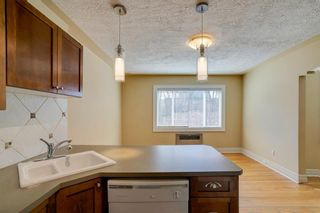 Photo 9: 30 330 19 Avenue SW in Calgary: Mission Apartment for sale : MLS®# A1091506