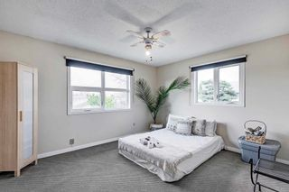 Photo 28: 16105 87A Avenue NW in Edmonton: Zone 22 House for sale : MLS®# E4245666