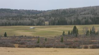 Photo 8: Corner of 178 Ave & 336 St W: Rural Foothills County Land for sale : MLS®# A1053038
