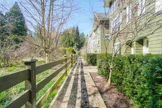 "Photo 1: 53 288 171 Street in Surrey: Pacific Douglas Townhouse for sale in ""The Crossing"" (South Surrey White Rock)  : MLS®# R2560869"