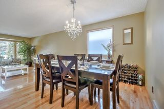 Photo 16: 44 DEERMOSS Crescent SE in Calgary: Deer Run Detached for sale : MLS®# A1018269