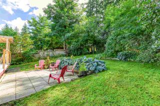 """Photo 19: 14092 114A Avenue in Surrey: Bolivar Heights House for sale in """"bolivar heights"""" (North Surrey)  : MLS®# R2489076"""