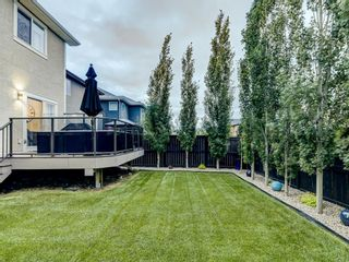 Photo 41: 6 SAGE MEADOWS Way NW in Calgary: Sage Hill Detached for sale : MLS®# A1009995