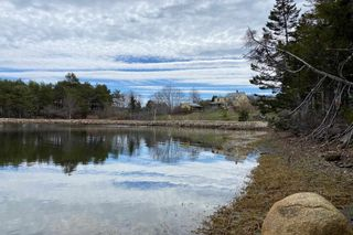 Photo 2: Indian Path Road in Indian Path: 405-Lunenburg County Vacant Land for sale (South Shore)  : MLS®# 202111377