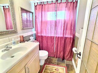 Photo 11: 10704 130 Street in Edmonton: Zone 07 House for sale : MLS®# E4247441