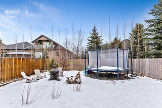 Photo 43: 6 Crystal Green Grove: Okotoks Detached for sale : MLS®# A1076312
