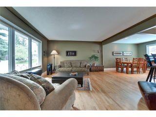 Photo 3: 131 LAKE CRIMSON Close SE in Calgary: Lake Bonavista House for sale : MLS®# C4064324