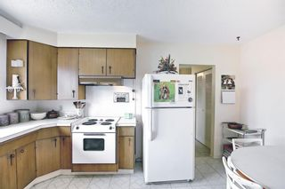 Photo 14: 1223 48 Avenue NW in Calgary: North Haven Detached for sale : MLS®# A1121377