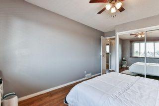 Photo 15: 2824 66 Street NE in Calgary: Pineridge Detached for sale : MLS®# C4274785