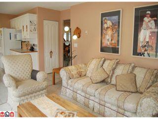 Photo 6: 14057 23A Avenue in Surrey: Sunnyside Park Surrey House for sale (South Surrey White Rock)  : MLS®# F1104014