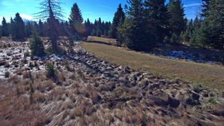 Photo 20: 20.02 Acres +/- NW of Cochrane in Rural Rocky View County: Rural Rocky View MD Land for sale : MLS®# A1065950