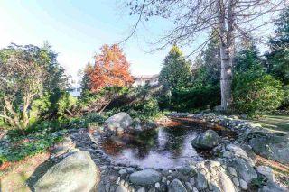 "Photo 15: 113 12890 17 Avenue in Surrey: Crescent Bch Ocean Pk. Condo for sale in ""Ocean Park Place"" (South Surrey White Rock)  : MLS®# R2567260"