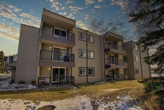 Photo 3: 305 40 Glenbrook Crescent: Cochrane Apartment for sale : MLS®# A1052145