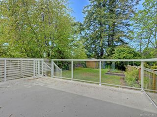 Photo 15: 4160 Borden St in VICTORIA: SE Lake Hill Half Duplex for sale (Saanich East)  : MLS®# 786805