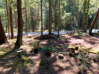 Photo 4: 413 CAMPBELL BAY Road: Mayne Island Land for sale (Islands-Van. & Gulf)  : MLS®# R2564883