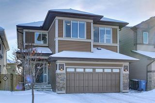 Main Photo: 75 Evansfield Road NW in Calgary: Evanston Detached for sale : MLS®# A1069726