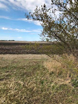Photo 16: RR 255 & HWY 37: Rural Sturgeon County Rural Land/Vacant Lot for sale : MLS®# E4244134