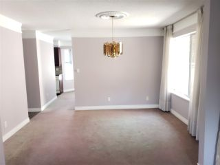 """Photo 7: 224 14861 98 Avenue in Surrey: Guildford Townhouse for sale in """"The Mansions"""" (North Surrey)  : MLS®# R2429452"""