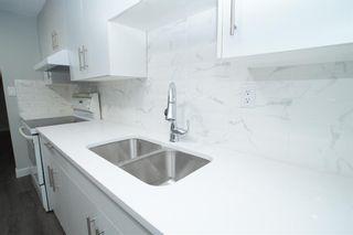 Photo 34: 367 Pinewind Road NE in Calgary: Pineridge Detached for sale : MLS®# A1094790