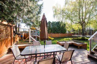 Photo 31: 5680 46A Avenue in Delta: Delta Manor House for sale (Ladner)  : MLS®# R2570862