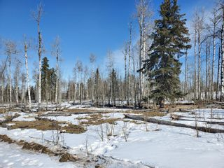 Photo 14: 0 NW9-33-5W5: Sundre Commercial Land for sale : MLS®# A1082207