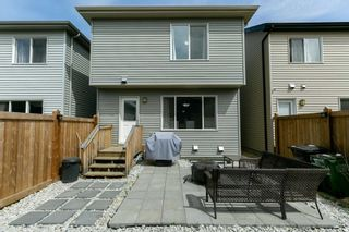 Photo 31: 2566 COUGHLAN Road in Edmonton: Zone 55 House for sale : MLS®# E4247684