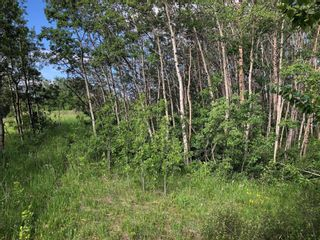 Photo 3: 24190 Meadow Drive in Rural Rocky View County: Rural Rocky View MD Residential Land for sale : MLS®# A1098168