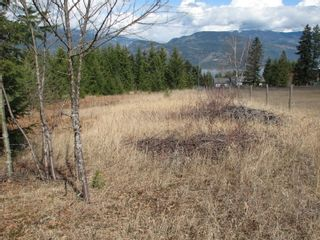 Photo 33: 1563 Kyte Rd in Sorretno: Sorrento House for sale (Shuswap)  : MLS®# 10175854
