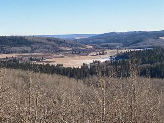 Photo 3: Corner of 178 Ave & 336 St W: Rural Foothills County Land for sale : MLS®# A1053038