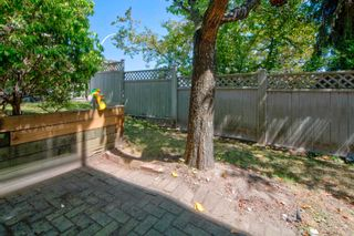 """Photo 29: 107 303 CUMBERLAND Street in New Westminster: Sapperton Townhouse for sale in """"CUMBERLAND COURT"""" : MLS®# R2604826"""